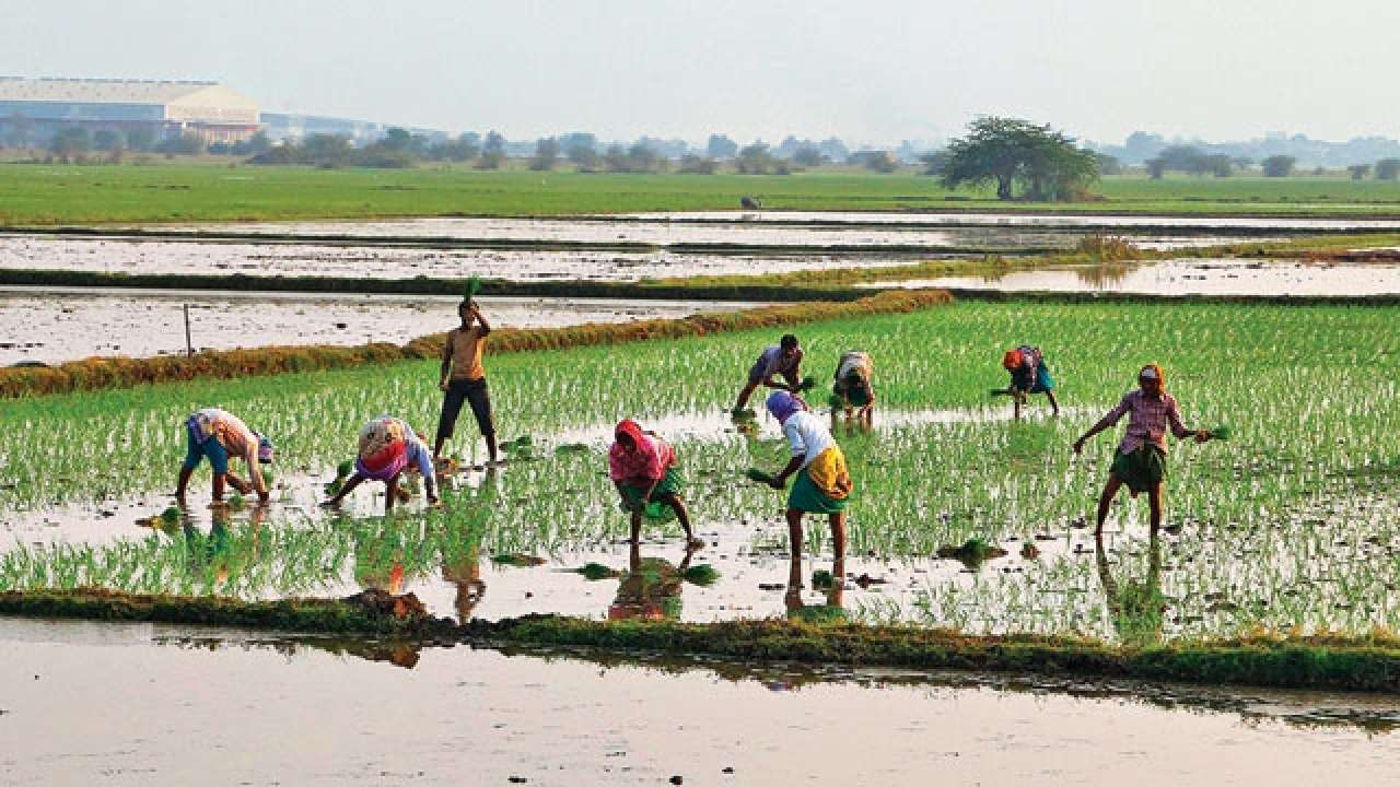 west bengal farmers