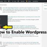 editor option is missing in wordpress